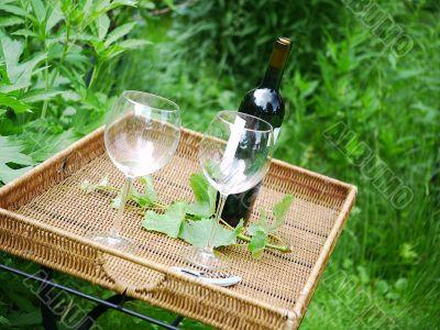 Wine Bottle and Glasses in Garden