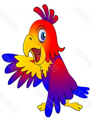 amusing parrot reasons