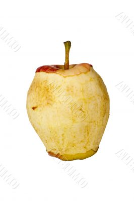 Decaying Gala Apple