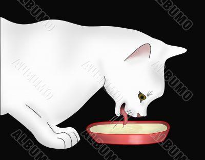 The cat drinks milk