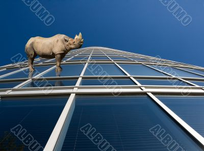 Rhino standung on skyscraper windows