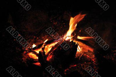 ampfire and camping