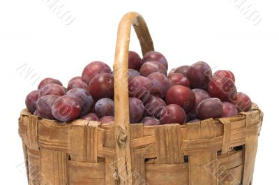 Crop of plums.