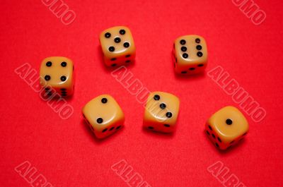 Dice used in Game