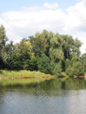 summer rural landscape with forest and river