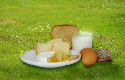 Breakfast foods on the grass