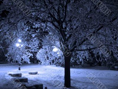 Winter landscape monochrome in blue