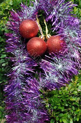 Christmas Decorations on Tropical Plant