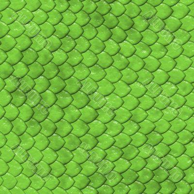 Reptile`s skin texture