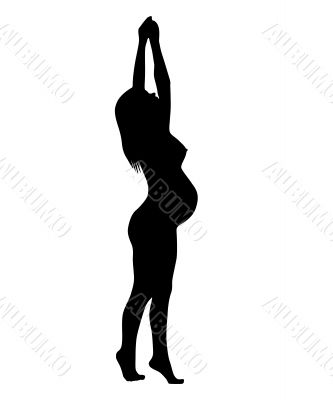 The Silhouette of the pregnant woman.