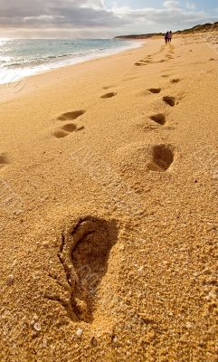 Footprints of friends