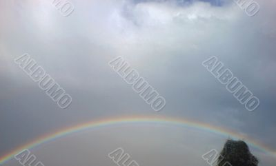 Rainbow rising after rain
