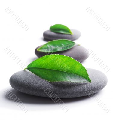 zen stones with leaves