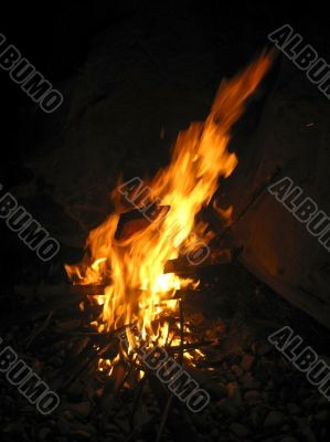 Bonfire and burning fire in the night