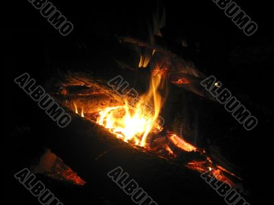 Bonfire and the coals after burning fire