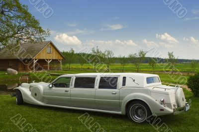 Light limousine in the meadow