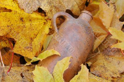 Vintage Bottle and Fallen Maple Leaves