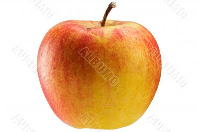 Multicoloured apple
