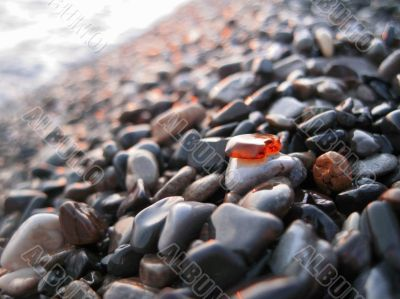 Orange glass laying on the sea shore