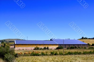 Cattle Sheds Solar Power Sation
