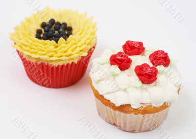 Two cupcakes with decorative techniques