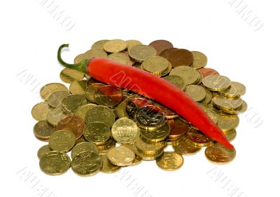 Pepper Chile in Euro coins