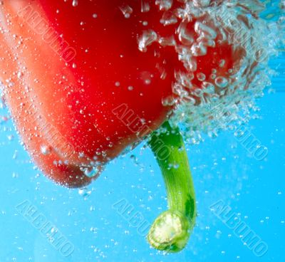 red pepper between bubbles