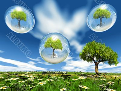 trees in bubble
