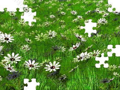 meadow puzzle