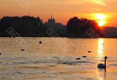 Evening Geneva