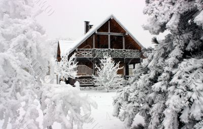 Cottage in winter.