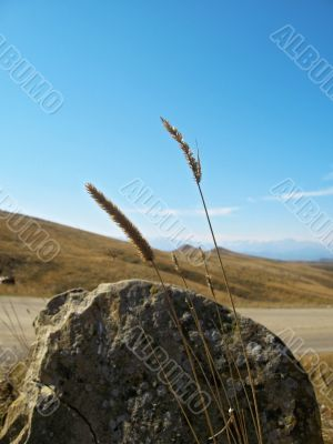 Big lonely stone near the road. Caucasus landscape