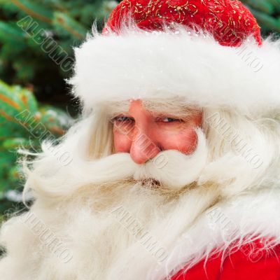 Santa Claus portrait smiling against christmas tree outdoor in s