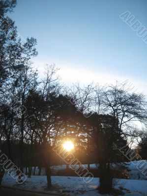 Sunrise in the winter forest. Caucaus nature