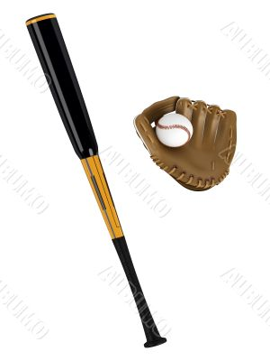 Baseball bat and glove