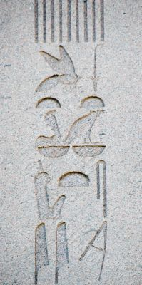 Hieroglyphics from the Obelisk of Thutmosis III in Istanbul