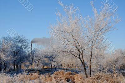 Winter Landscape and Smoking Chimney