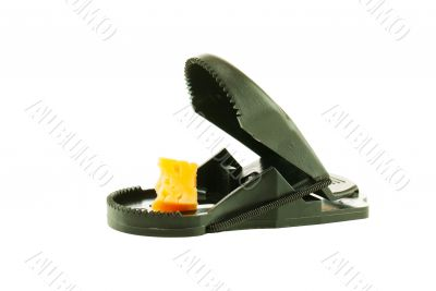 Black plastic mousetrap with bait