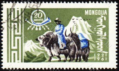 Post stamp with man in national Mongolian costume on yak