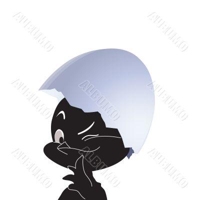 Black chicken in egg. Vector illustration