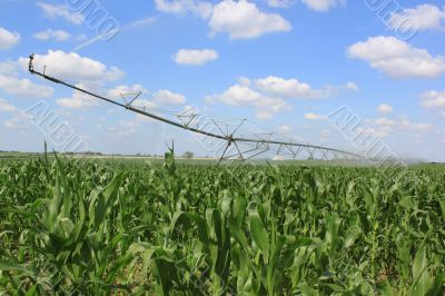 irrigation system for agriculture