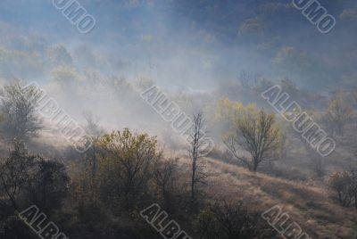Foggy Hilly Contryside in the Late Fall