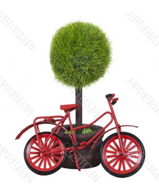 Red Bicycle Leaning Against Potted Tree