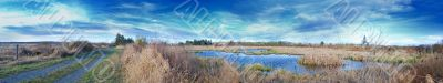 Dirt Road Swamp Panorama