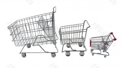 Family Shopping Carts