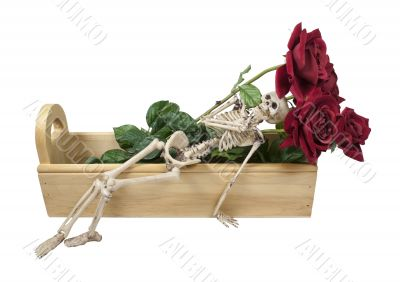Skeleton Laying in a Wooden Box with Roses