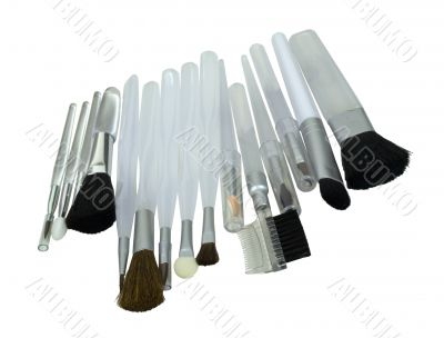 A Variety of Cosmetic Brushes