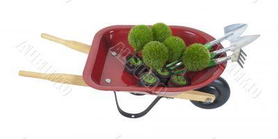 Wheelbarrow with Plants and Tools