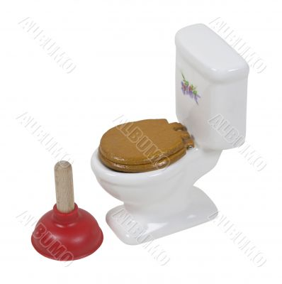 Toilet and Large Plunger