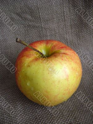 very nice and ripe apple on the table